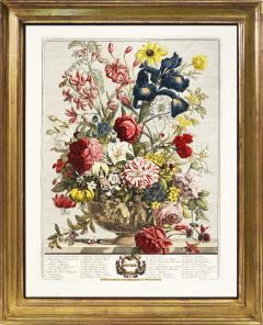 Robert Furber Twelve Months of Flowers - 1202534