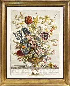 Robert Furber Twelve Months of Flowers - 1202535