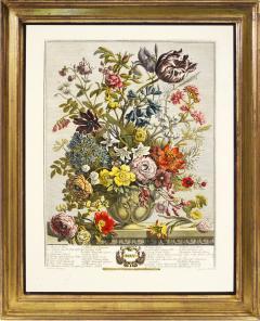 Robert Furber Twelve Months of Flowers - 1202536