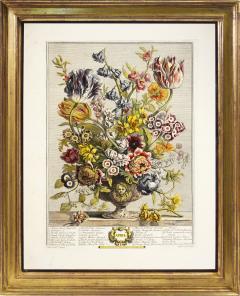 Robert Furber Twelve Months of Flowers - 1202537