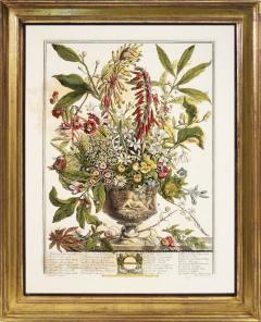 Robert Furber Twelve Months of Flowers - 1202539