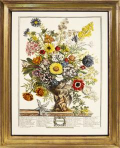 Robert Furber Twelve Months of Flowers - 1202541