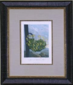 Robert John Thornton Dr Robert John Thornton Agave or American Aloe 1812 - 1548235