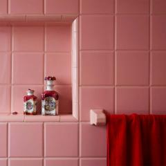 Roberta Borges Photography Red and Pink 2008 by Brazilian Photographer Roberta Borges - 1251885
