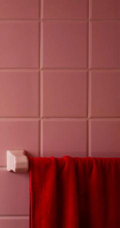 Roberta Borges Photography Red and Pink 2008 by Brazilian Photographer Roberta Borges - 1251907