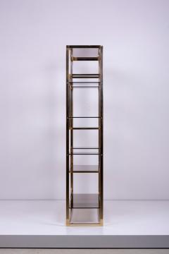 Romeo Rega Very Huge Brass and Tinted Glass Bookshelf or tag re by Romeo Rega - 1211148