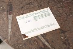 Ronald Schmitt Ronald Schmitt Fossil Stone Top Coffee Table Germany 1970s - 1622828