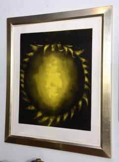 Ross Bleckner Large American Abstract Slikscreen on Paper Ross Bleckner - 348827