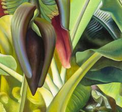 Ross Eugene Braught Banana Tree - 1181219