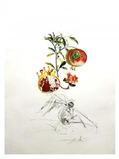 Salvador Dal Salvador Dali Angel and Pomegranate Original Hand Signed Lithograph - 1049263