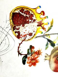 Salvador Dal Salvador Dali Angel and Pomegranate Original Hand Signed Lithograph - 1049268