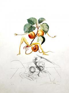 Salvador Dal Salvador Dali Apricot Original Hand Signed Lithograph - 1049275