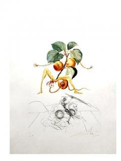 Salvador Dal Salvador Dali Apricot Original Hand Signed Lithograph - 1049276