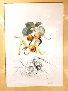 Salvador Dal Salvador Dali Apricot Original Hand Signed Lithograph - 1049283