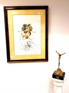 Salvador Dal Salvador Dali Apricot Original Hand Signed Lithograph - 1049285