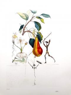 Salvador Dal Salvador Dali Don Quixote Pear Original Hand Signed Lithograph - 1049558
