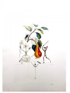 Salvador Dal Salvador Dali Don Quixote Pear Original Hand Signed Lithograph - 1049566
