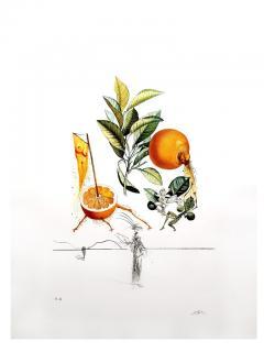 Salvador Dal Salvador Dali Erotic Grapefruit Original Hand Signed Lithograph - 1049385