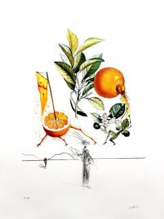 Salvador Dal Salvador Dali Erotic Grapefruit Original Hand Signed Lithograph - 1049386