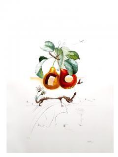 Salvador Dal Salvador Dali Fruits With Holes Original Hand Signed Lithograph - 1049425