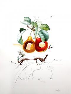 Salvador Dal Salvador Dali Fruits With Holes Original Hand Signed Lithograph - 1049426