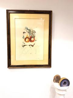 Salvador Dal Salvador Dali Fruits With Holes Original Hand Signed Lithograph - 1049435