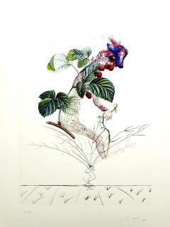 Salvador Dal Salvador Dali Raspberry Original Hand Signed Lithograph - 1049415