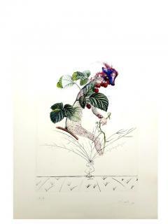 Salvador Dal Salvador Dali Raspberry Original Hand Signed Lithograph - 1049416