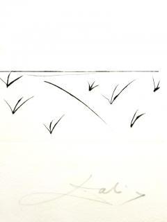 Salvador Dal Salvador Dali Raspberry Original Hand Signed Lithograph - 1049417