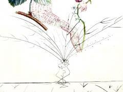 Salvador Dal Salvador Dali Raspberry Original Hand Signed Lithograph - 1049419