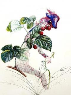 Salvador Dal Salvador Dali Raspberry Original Hand Signed Lithograph - 1049420