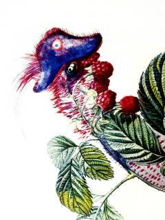 Salvador Dal Salvador Dali Raspberry Original Hand Signed Lithograph - 1049421