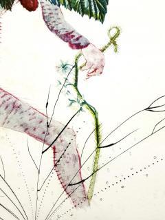 Salvador Dal Salvador Dali Raspberry Original Hand Signed Lithograph - 1049422