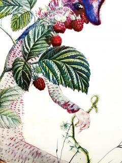 Salvador Dal Salvador Dali Raspberry Original Hand Signed Lithograph - 1049423
