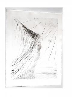 Salvador Dal Salvador Dali The Fairy Original Etching on Silk - 1048108