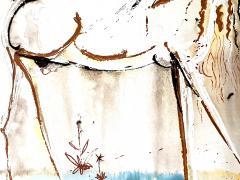Salvador Dal Salvador Dali Unicorn Original Lithograph - 1048145