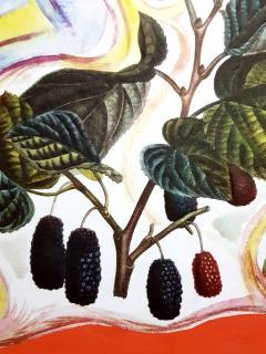 Salvador Dal Salvador Dali Wild Blackberries Original Hand Signed Lithograph - 1049734