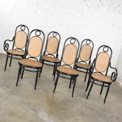 Salvatore Leone Set of 6 17 gebruder thonet style black natural tall bentwood chairs - 1588689