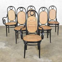 Salvatore Leone Set of 6 17 gebruder thonet style black natural tall bentwood chairs - 1588697