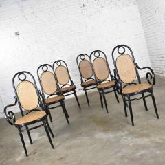 Salvatore Leone Set of 6 17 gebruder thonet style black natural tall bentwood chairs - 1588718