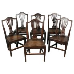 Set of English Country Chairs - 1341245