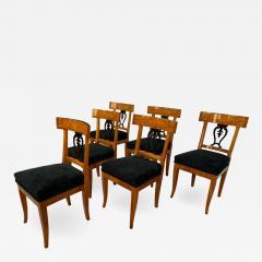 Set of Six Biedermeier Chairs Cherry Veneer and Ash Roots Germany circa 1820 - 1577147
