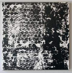 Sheila White Square 3 Black and White Painting on Canvas - 258346