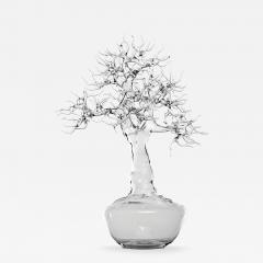 Simone Crestani Bonsai 17 003 from the Landscape Work - 327483