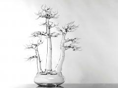 Simone Crestani Bonsai 17 005 from the Landscape Work - 328183