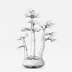Simone Crestani Bonsai 17 005 from the Landscape Work - 329713