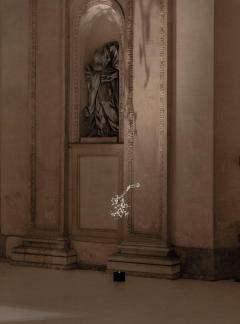 Simone Crestani Chlorophyll Chandelier by Simone Crestani and Davide Groppi - 1583867