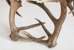 Spectacular Antler Chair Bench  - 1023162