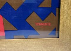 Splendid TORRENTE decorative framed Silk Scarf from Paris France - 2086203