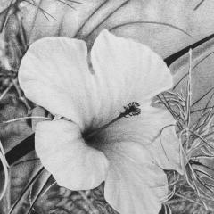 Steven Bitteroff American 20th century Flowers 5 Acrylic on canvas - 1903829